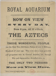 Advert for the Royal Aquarium 998